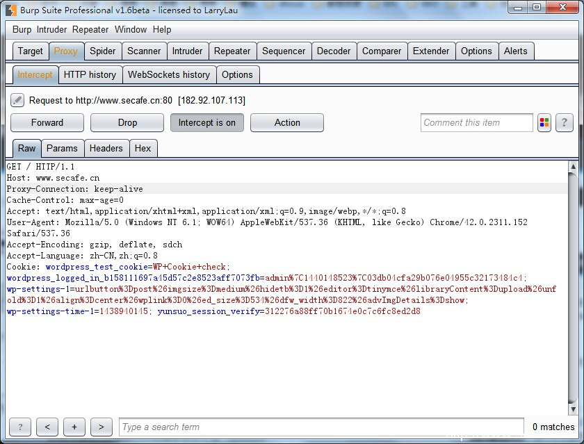 BurpSuite1.6破解版