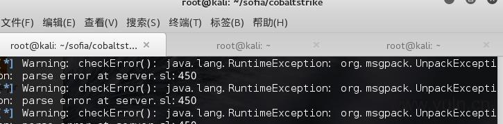 kali2.0无法使用cobaltstrike报错